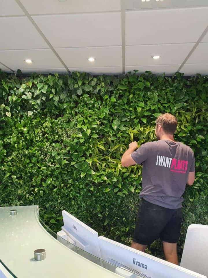 Living Green Walls the HYVERT Way
