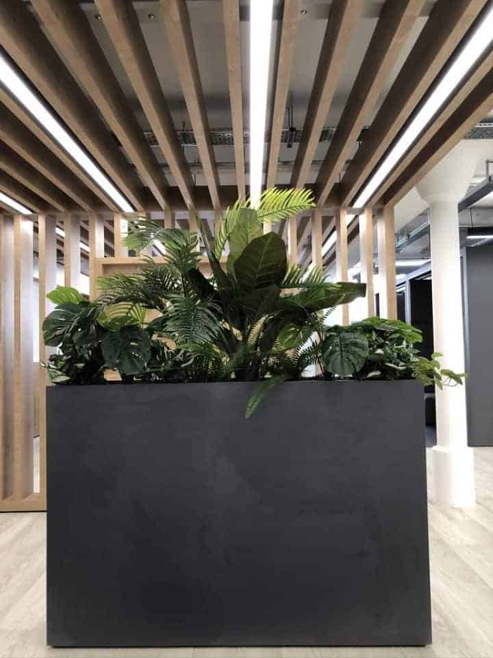 Working 'Safely' with the help of Plants