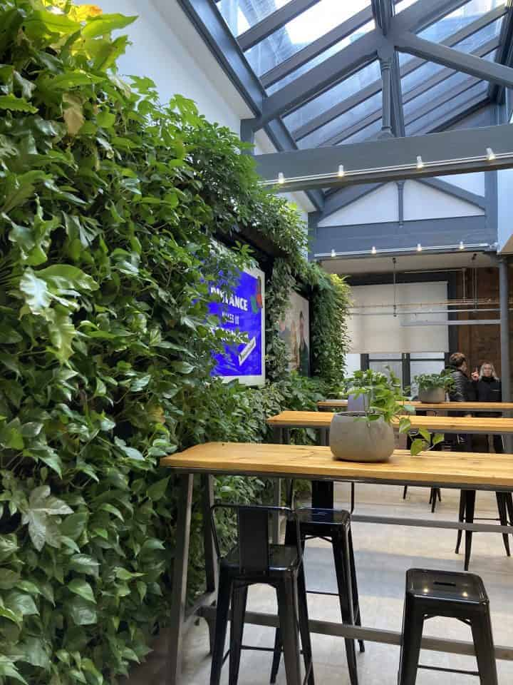 Indoor HYVERT Living Wall at Safety Culture