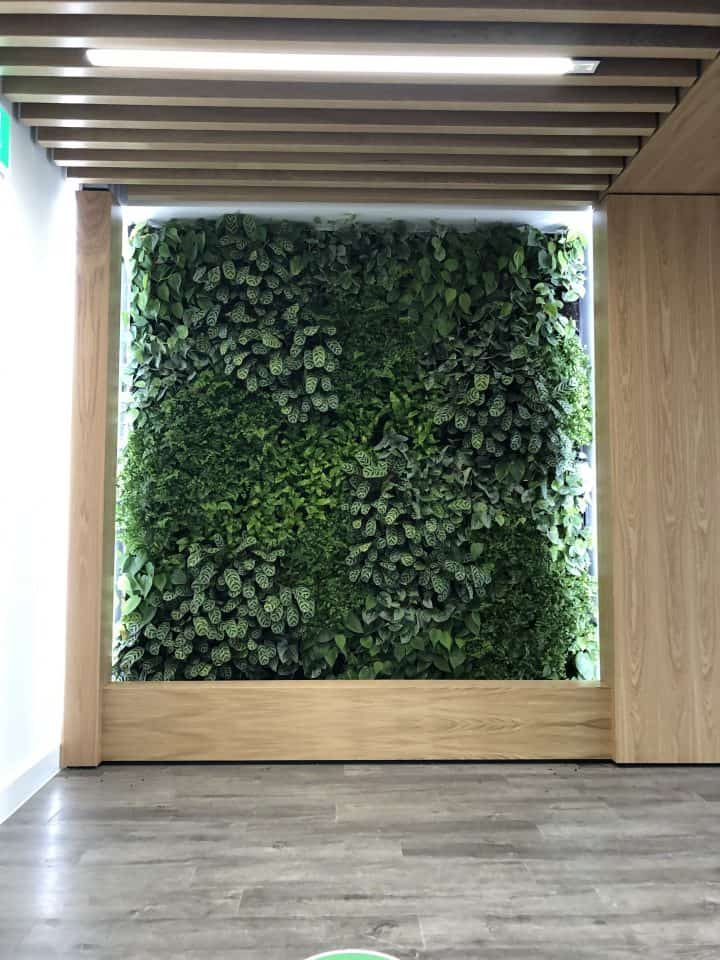 HYVERT  Green Infrastructure